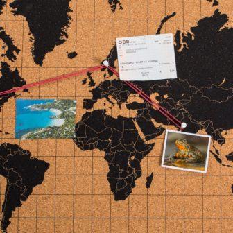 Kork Pinnwand Weltkarte